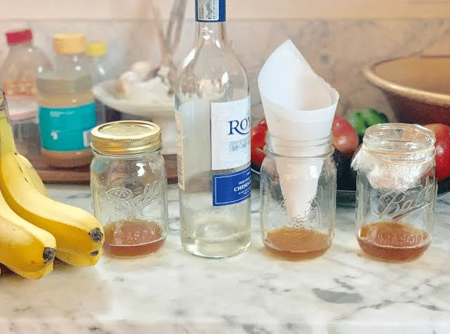 Homemade Fly Trap Vinegar Sugar