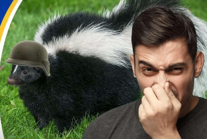 How To Remove Skunk Smell From People