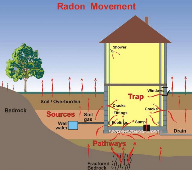 Radon Testing Cost