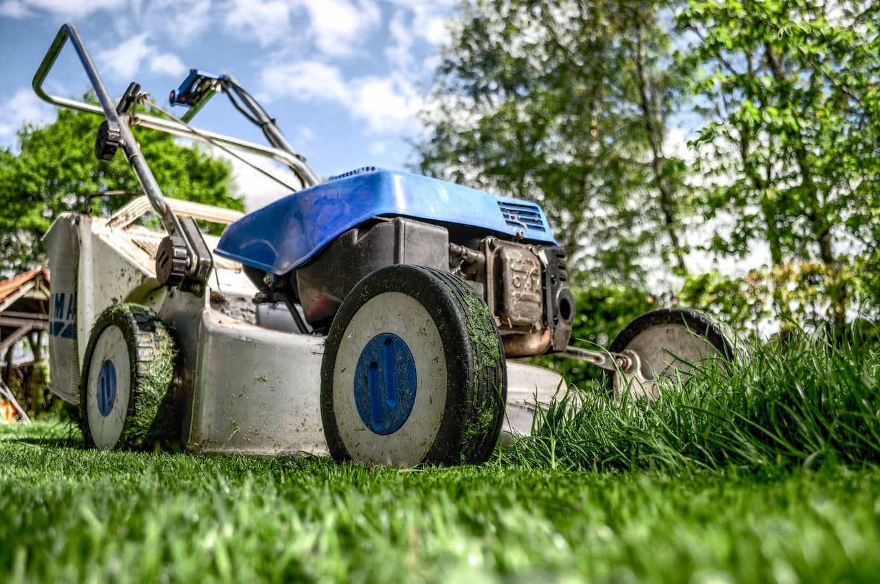 5 Tips to start your own lawn care business